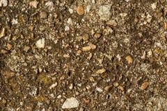瓦砾、石渣和小卵石混凝土纹理 不伤环境的建筑概念 图库摄影