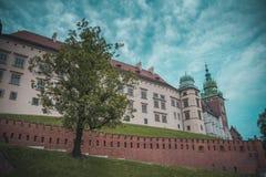 瓦维尔山城堡在克拉科夫 免版税图库摄影