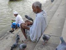 瓦腊纳西,北方邦,印度- 2009 11月3日喂养在ghats的A人鸽子临近河恒河 免版税库存照片