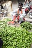 瓦腊纳西,印度, 2010年9月19日:卖菜的年轻人 免版税库存图片