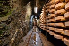 瓦莱达奥斯塔Fontina意大利人乳酪 传统洞老化存贮 库存图片