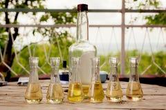 瓶与小玻璃的李子白兰地酒在木桌上 库存图片