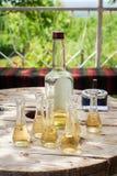 瓶与小玻璃的李子白兰地酒在木桌上 免版税库存照片