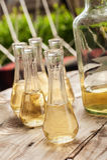 瓶与小玻璃的李子白兰地酒在木桌上 免版税库存图片
