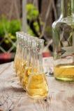 瓶与小玻璃的李子白兰地酒在木桌上 库存照片