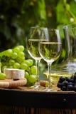 瓶与葡萄酒杯和葡萄的白葡萄酒在葡萄园里 免版税图库摄影