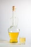 瓶与玻璃的李子白兰地酒 库存照片