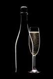瓶充分香槟槽 库存图片