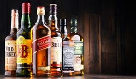 瓶几个全球性威士忌酒品牌 库存照片