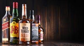 瓶几个全球性威士忌酒品牌 图库摄影