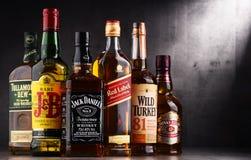 瓶几个全球性威士忌酒品牌 免版税图库摄影