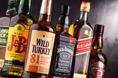 瓶几个全球性威士忌酒品牌 库存图片