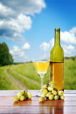 瓶反对美好的风景的酒和葡萄束 图库摄影