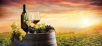 瓶和葡萄酒杯在桶在葡萄园里 免版税库存图片