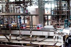 瓶啤酒生产 免版税库存图片