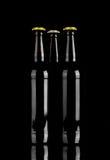 瓶啤酒 库存图片