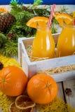 瓶图象查出的汁液桔子 图库摄影