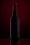 瓶在深红背景的啤酒。 库存图片