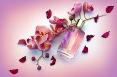瓶妇女在桃红色背景的` s香水 库存图片