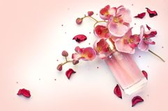 瓶妇女在桃红色背景的` s香水 免版税库存照片