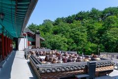 瓶子在tongdosa寺庙站立在洋伞市 库存照片