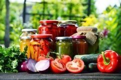 瓶子泡菜在庭院里 用卤汁泡的食物 免版税图库摄影