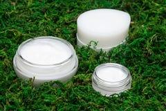 瓶子特写镜头有绿色青苔围拢的奶油的 库存照片