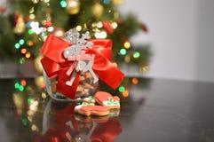瓶子用圣诞节曲奇饼 免版税库存图片
