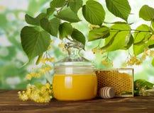 瓶子蜂蜜和蜂窝在开花的分支菩提树背景  免版税库存照片