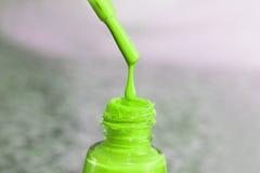 瓶指甲盖的亮漆 妇女` s丙烯酸漆,钉子的胶凝体油漆 指甲盖的紫胶混杂的颜色 喜欢wome 免版税图库摄影