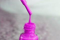 瓶指甲盖的亮漆 妇女` s丙烯酸漆,钉子的胶凝体油漆 指甲盖的紫胶混杂的颜色 喜欢wome 免版税库存照片
