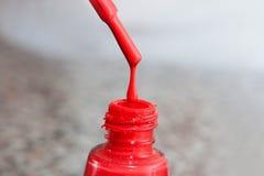 瓶指甲盖的亮漆 妇女` s丙烯酸漆,钉子的胶凝体油漆 指甲盖的紫胶混杂的颜色 喜欢wome 免版税库存图片