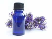 瓶淡紫色 库存照片