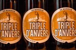 瓶用啤酒在有啤酒厂De Koninck产品的地方商店成三倍在安特卫普 库存照片
