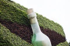 瓶的艺术设施在墙壁上的有植物的 库存图片
