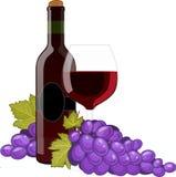 瓶红葡萄酒葡萄酒杯 库存照片