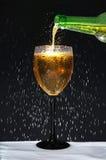 瓶结露葡萄酒杯 免版税图库摄影