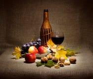 瓶酒、玻璃、坚果和果子 免版税库存图片
