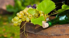 瓶酒和葡萄 免版税库存照片