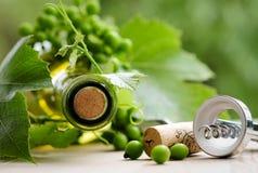 瓶酒和绿色叶子 免版税库存图片