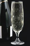 瓶香槟玻璃 免版税图库摄影