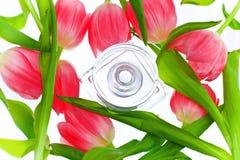 瓶香水粉红色包围的郁金香 免版税库存图片