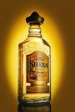 瓶龙舌兰酒墨西哥山脉金子 图库摄影