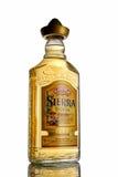 瓶龙舌兰酒墨西哥山脉金子 免版税库存照片