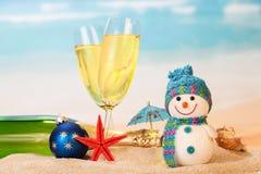 瓶,两块玻璃香槟,雪人,球,在反对海的沙子 库存图片
