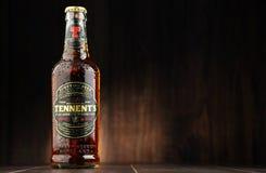 瓶ofTennents威士忌酒橡木啤酒 图库摄影