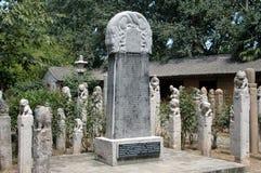 瓷庭院拴住的马过帐XI 免版税库存图片