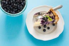 瓷断送新瓷草莓茶时间 自创蓝莓乳酪蛋糕用在蓝纸背景的乳清干酪乳酪 图库摄影