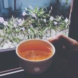 瓷断送新瓷草莓茶时间 免版税图库摄影