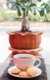 瓷断送新瓷草莓茶时间 库存照片